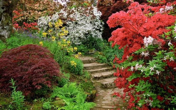cr er un jardin anglais sur un petit terrain. Black Bedroom Furniture Sets. Home Design Ideas