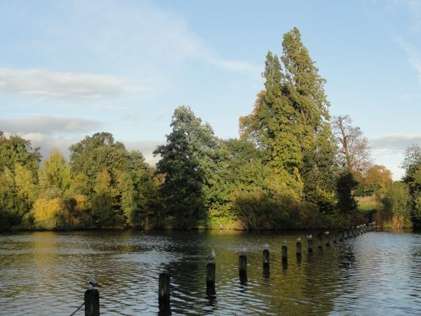 visite des jardins de kensington  u00e0 londres