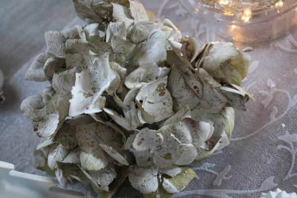 Decoration Voile Blanc Pied De Sapins