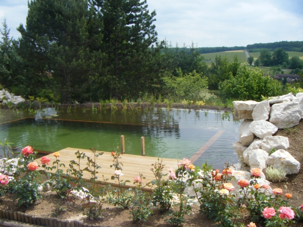 Tanch it d 39 un bassin de jardin bassin de jardin for Reparation bache epdm