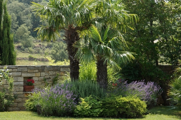 Am nager son jardin au printemps le top 5 des conseils pro for Amenager son jardin avec des vivaces
