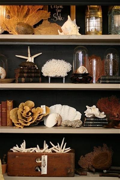 cr er son cabinet de curiosit s. Black Bedroom Furniture Sets. Home Design Ideas