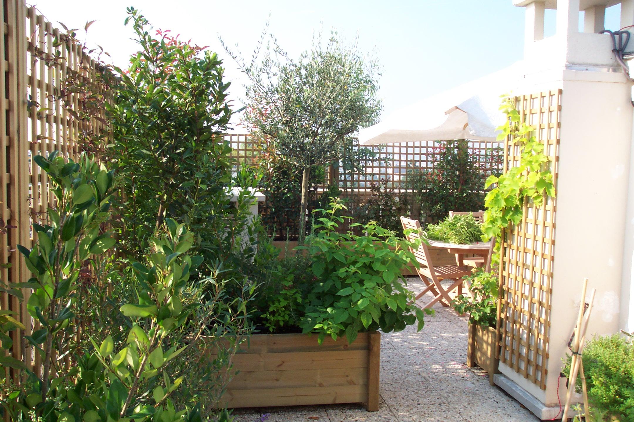 Arbre En Pot Terrasse une terrasse oui, mais sans vis-à-vis !